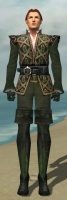 Mesmer Courtly Armor M gray front.jpg