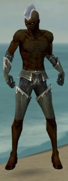 Necromancer Tyrian Armor M gray arms legs front.jpg
