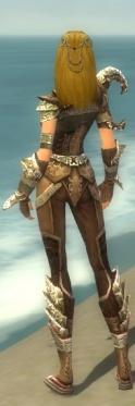 Ranger Asuran Armor F gray back.jpg