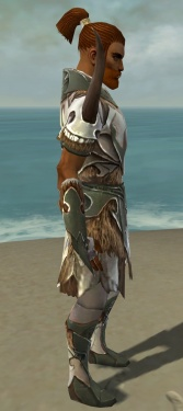 Paragon Norn Armor M gray side.jpg