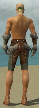Ranger Fur-Lined Armor M gray arms legs back.jpg