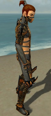 Assassin Elite Exotic Armor M gray side.jpg