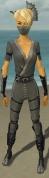 Assassin Shing Jea Armor F gray front.jpg