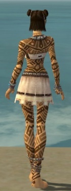 Monk Labyrinthine Armor F dyed back.jpg
