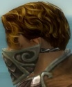 Ranger Elite Canthan Armor M gray head side.jpg