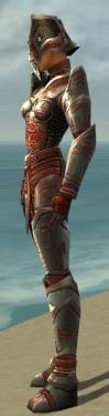 Warrior Asuran Armor F gray side.jpg