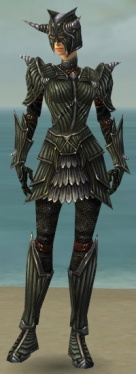 Warrior Wyvern Armor F gray front.jpg