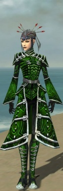 Necromancer Fanatic Armor F dyed front.jpg