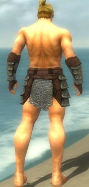 Warrior Krytan Armor M gray arms legs back.jpg
