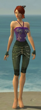 Mesmer Elite Luxon Armor F gray arms legs front.jpg