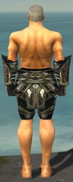 Warrior Elite Kurzick Armor M gray arms legs back.jpg