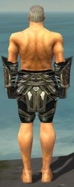 Warrior Elite Kurzick Armor M gray arms legs back.jpg