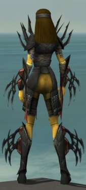 Assassin Ancient Armor F dyed back.jpg