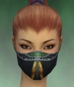 Assassin Exotic Armor F dyed head front.jpg