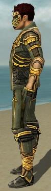 Mesmer Asuran Armor M gray side.jpg