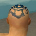Monk Istani Armor M dyed head back.jpg