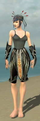 Necromancer Elite Sunspear Armor F gray arms legs front.jpg