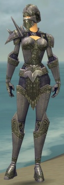 Warrior Platemail Armor F gray front.jpg