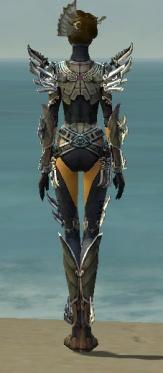Assassin Asuran Armor F gray back.jpg