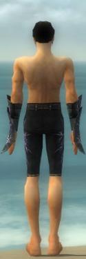 Elementalist Elite Stormforged Armor M gray arms legs back.jpg