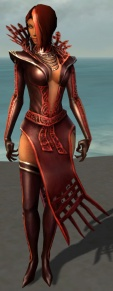 Livia Armor Brotherhood Front.jpg