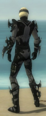 Assassin Kurzick Armor M gray back.jpg