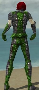 Necromancer Ascalon Armor M dyed back.jpg