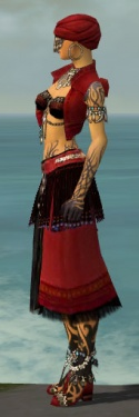 Ritualist Seitung Armor F dyed side.jpg