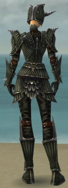 Warrior Wyvern Armor F gray back.jpg