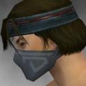 Assassin Shing Jea Armor M gray head side.jpg