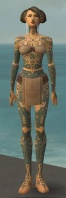 Monk Star Armor F gray front.jpg