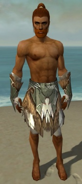 Paragon Norn Armor M gray arms legs front.jpg