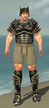 Warrior Ancient Armor M gray chest feet front.jpg