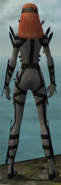 Assassin Obsidian Armor F gray back.jpg