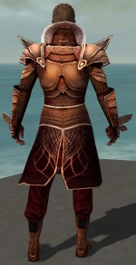 General Morgahn Mysterious Armor Back.jpg