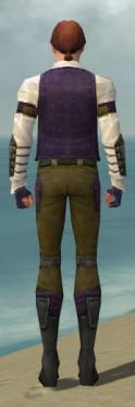 Mesmer Ascalon Armor M dyed back.jpg