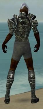 Necromancer Fanatic Armor M gray chest feet back.jpg