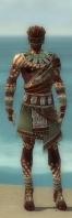 Ritualist Elite Exotic Armor M gray front.jpg