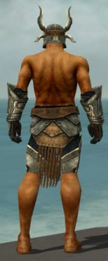 Warrior Elite Sunspear Armor M gray arms legs back.jpg