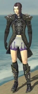 Elementalist Elite Stoneforged Armor M gray chest feet front.jpg