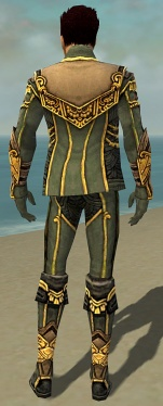 Mesmer Asuran Armor M gray back.jpg