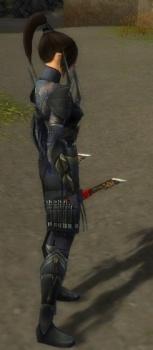 Zenmai Mysterious Armor F gray side.jpg