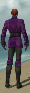 Mesmer Shing Jea Armor M dyed back.jpg