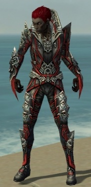 Necromancer Monument Armor M dyed front.jpg
