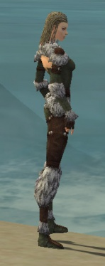 Ranger Elite Fur-Lined Armor F gray side.jpg