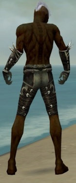 Necromancer Shing Jea Armor M gray arms legs back.jpg