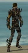 Assassin Elite Kurzick Armor M gray front.jpg