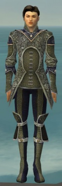 Elementalist Canthan Armor M gray front.jpg