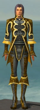 Elementalist Elite Canthan Armor M dyed front.jpg