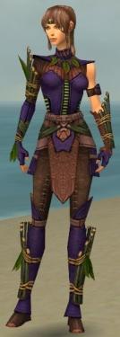 Ranger Druid Armor F dyed front.jpg